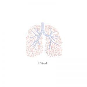Foto tapetai Organs - Anatomy of the soul, P132605-W