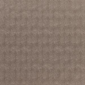 tapetai, Dekoma, Sculpture, Amur Rust 32
